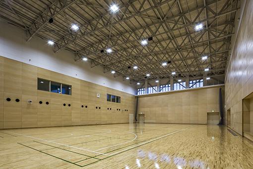 hitachi_arena